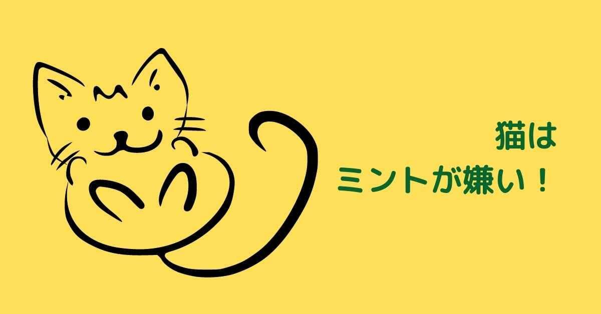 猫 ミント
