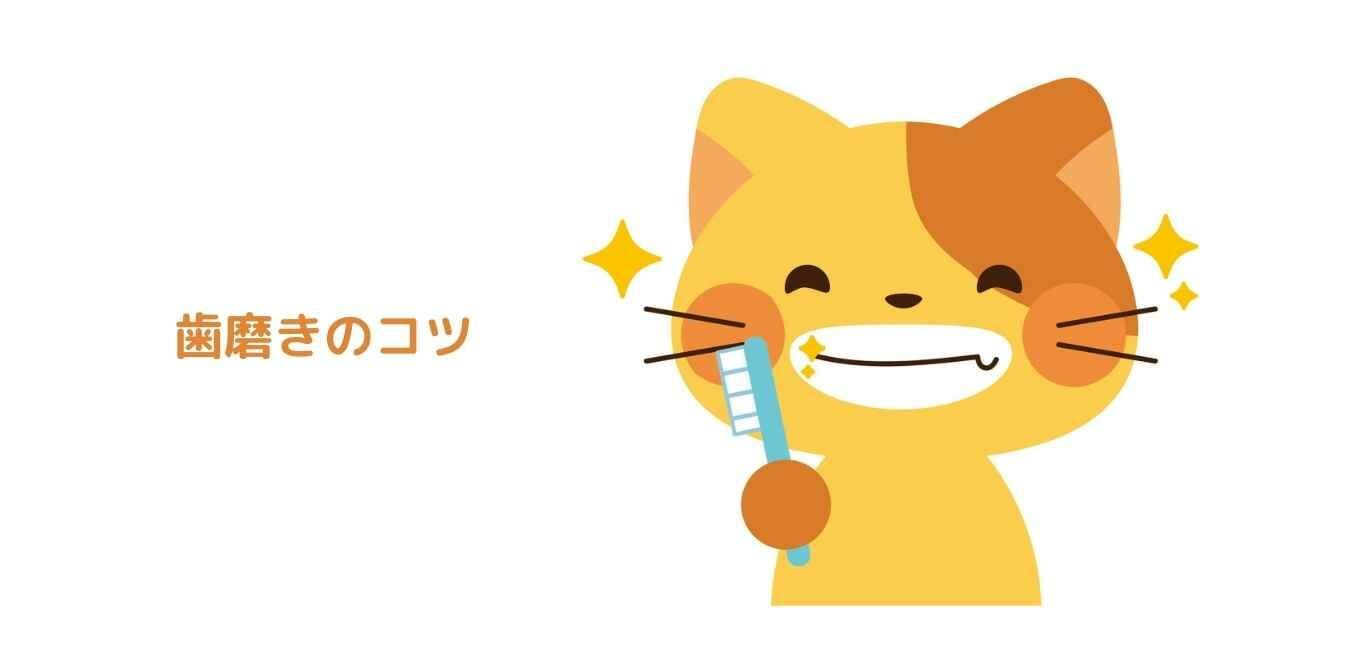 猫 歯磨き