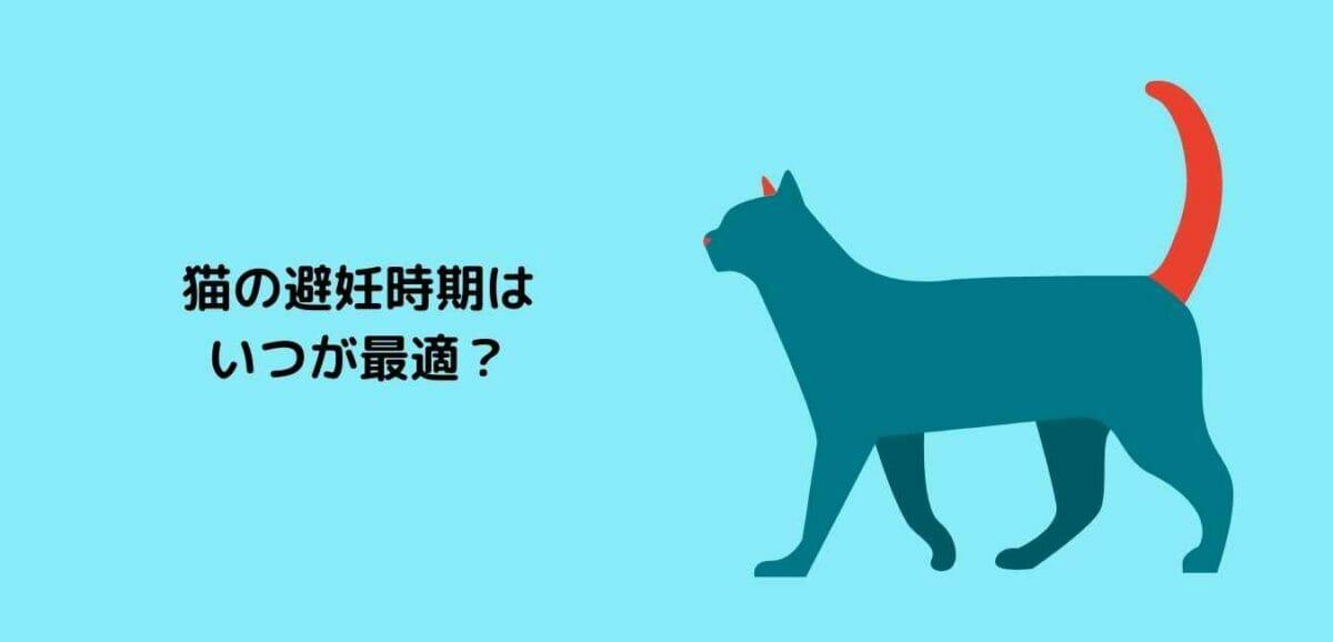 猫 避妊時期