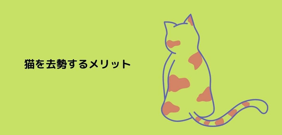 猫 去勢 メリット